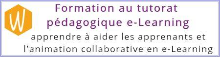 WEBAGOGIE_Prestations_formation_au_tutorat_pédagogique_e_Learning